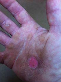 Hands of HardWork